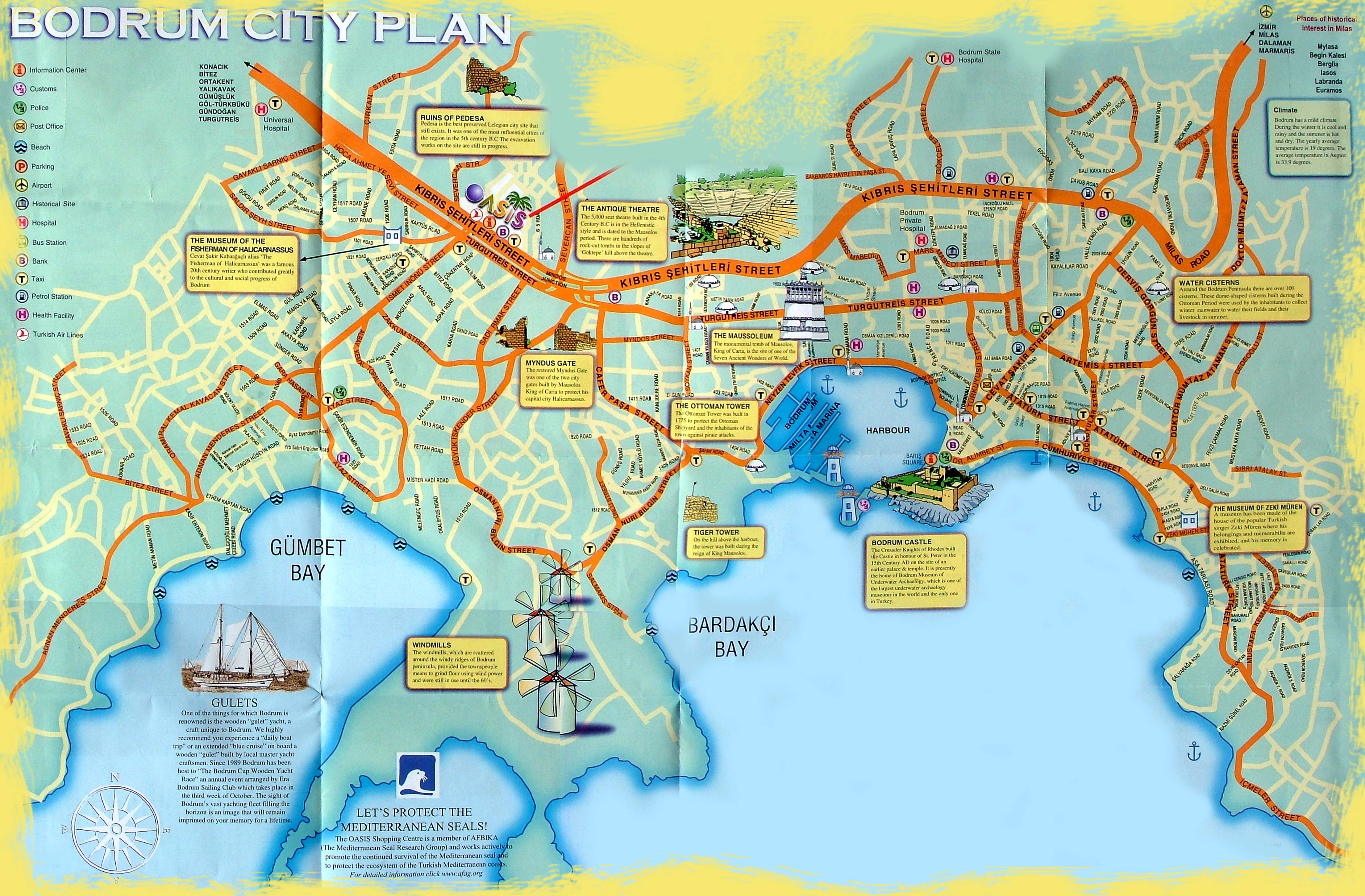Bodrum Turkey Detailed towncity map free download