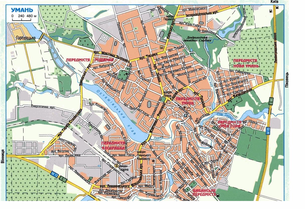 Карта схема план с улицами и домами